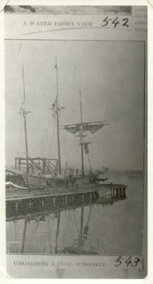 Murton & Reid's coal wharf, Hamilton