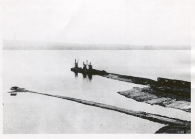 Hamilton Steel & Iron Company's wharf, 1900
