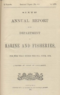 Report of Chairman of Board of Steamboat Inspection For the Year Ended 31st December 1873