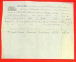 Swallow, Manifest, 25 June 1854