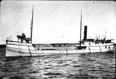 Steamer Maggie Duncan