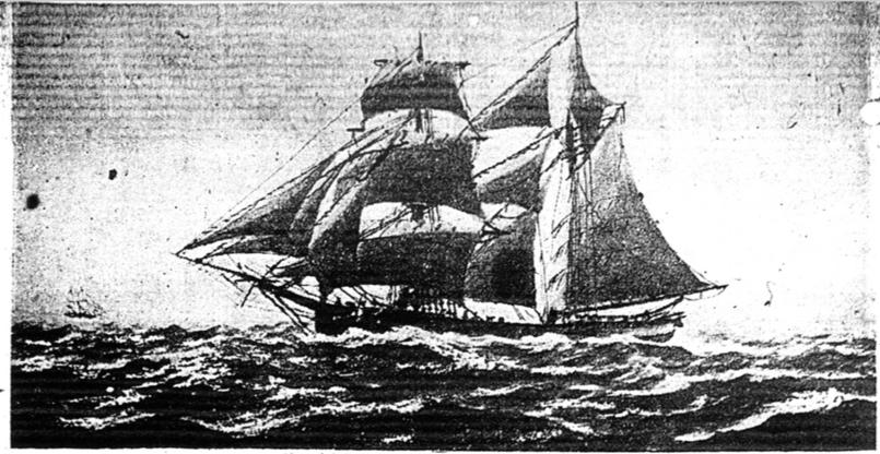 Wild Man Who Sailed In His Socks: Schooner Days II (2)