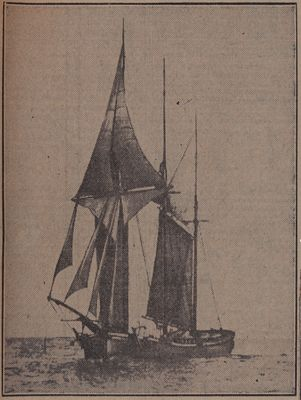 "Another ""Bull-Of-The-Woods"": Schooner Days CXI (111)"