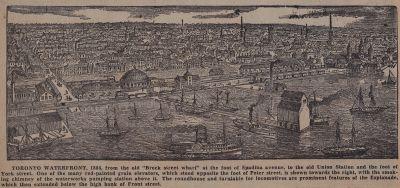 Three Years in the Greenwood: Schooner Days CCCCLIII (453)