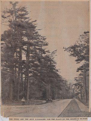 Nelson's Port and Pines: Schooner Days CCCCLXIX (469)