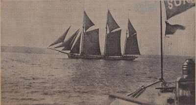 Ship That Never Came Back: Schooner Days CCCCLXXXI (481)